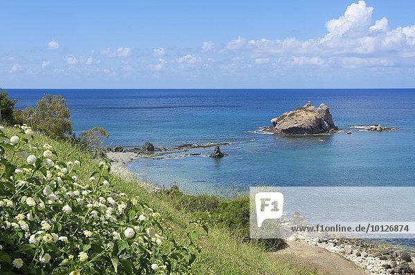 Strand auf der Akamas Halbinsel bei Polis  Südzypern  Zypern  Europa
