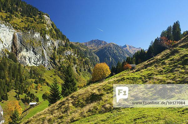 Blick auf Hüttschlag im Großarltal im Pongau im Salzburger Land  Österreich  Europa