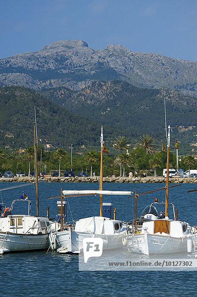 Fischerboote in Port d'Andratx  Mallorca  Balearen  Spanien  Europa