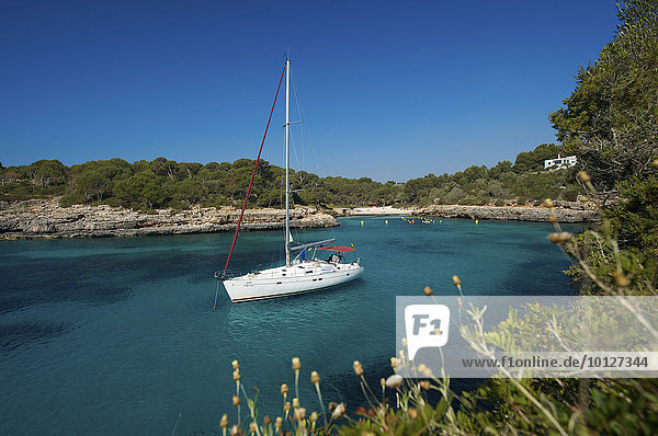 Segelyacht in der Cala Sa Nau  Mallorca  Balearen  Spanien  Europa