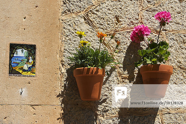 Heiligenbild und Blumentöpfe an Hauswand  Valldemossa  Mallorca  Balearen  Spanien  Europa
