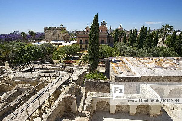 Gärten im Alcazar de Jerez  Jerez de la Frontera  Andalusien  Spanien  Europa