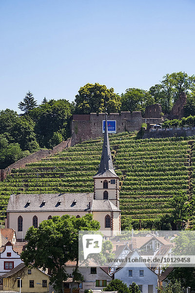 Kirche St. Pankratius und Ruine Clingenburg  Klingenberg am Main  Unterfranken  Franken  Bayern  Deutschland  Europa