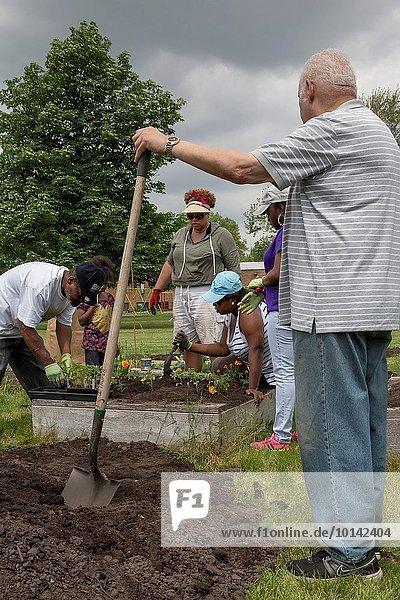 Pflanze Kirche Mitglied Gemeinschaftsgarten Detroit Michigan