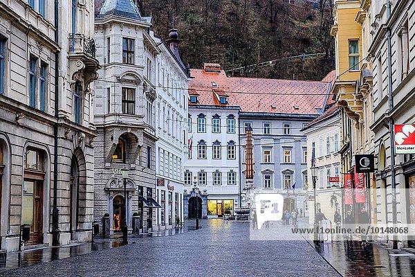 Ljubljana Hauptstadt Europa Eingang Stadt alt Slowenien