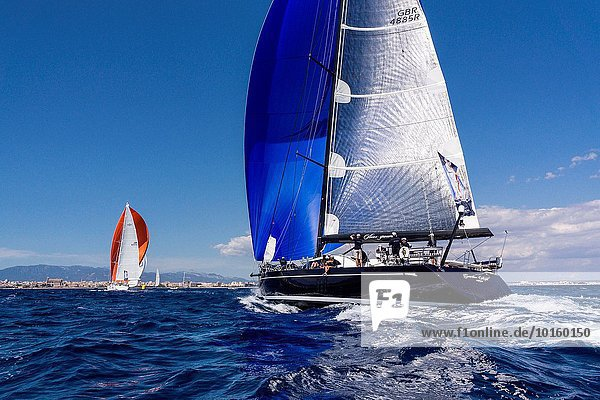 Europa Tasse Mallorca Palma de Mallorca Balearen Balearische Inseln Spanien