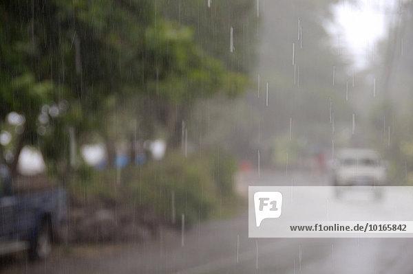 Tropischer Regen  Mahé  Seychellen  Afrika