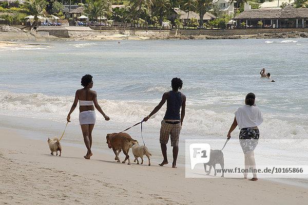 Zwei Frauen und ein Mann führen Hunde am Strand Gassi  Mahé  Seychellen  Afrika