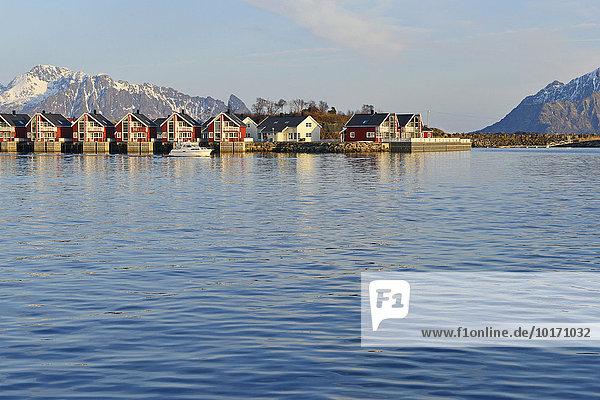 Reihe roter Ferienhäuser an blauem Wasser  Svolvær  Insel Austvågøy  Lofoten  Nordland  Norwegen  Europa