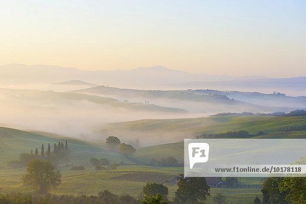Nebel  Sonnenaufgang im Tal Val d'Orcia  Toskana  Italien  Europa
