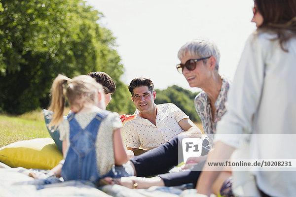 Mehrgenerationen-Familie entspannt auf einer Decke im sonnigen Feld
