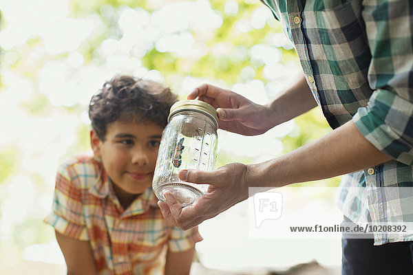 Vater und Sohn beobachten Schmetterling im Glas