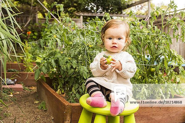Caucasian baby girl sitting on stool in vegetable garden
