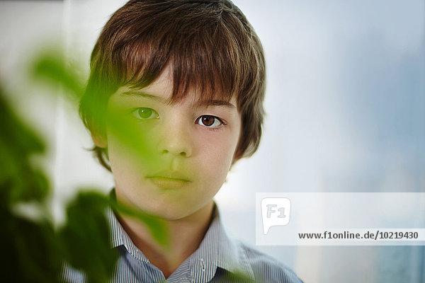 Caucasian boy standing behind plants indoors