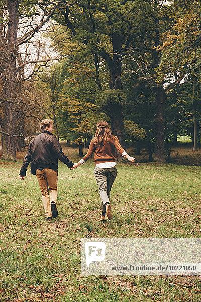 Rückansicht eines verliebten jungen Paares  das Händchen hält und in einem herbstlichen Park rennt