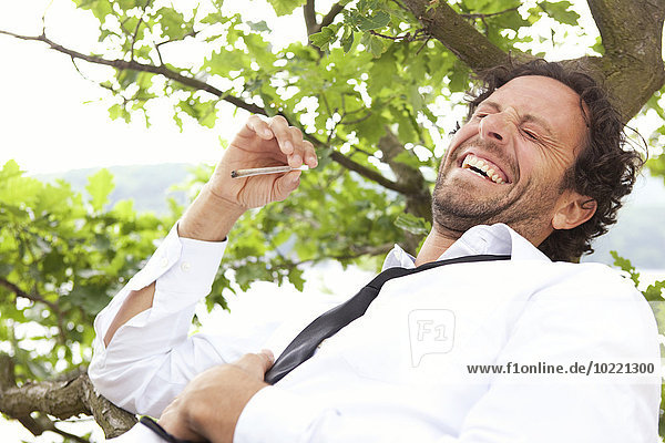 Germany  relaxed businessman lying in tree smoking a joint
