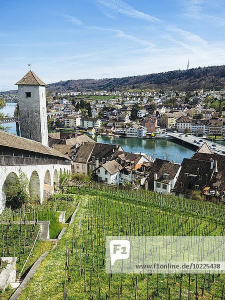 Schweiz  Schaffhausen  Blick von Munot auf den Rhein