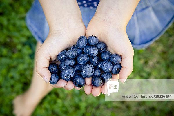 Kleine Mädchenhände mit Blaubeeren