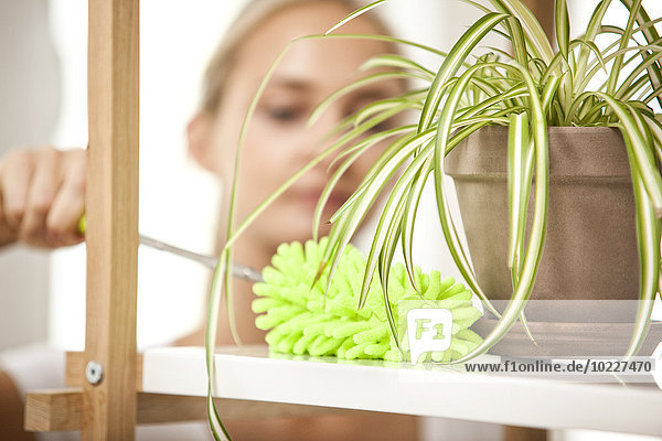 Frauen-Reinigungsregal mit Topfpflanze