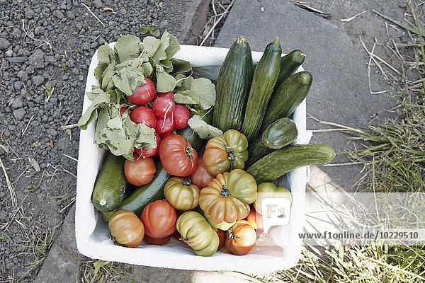 Sortiment frisches Gemüse