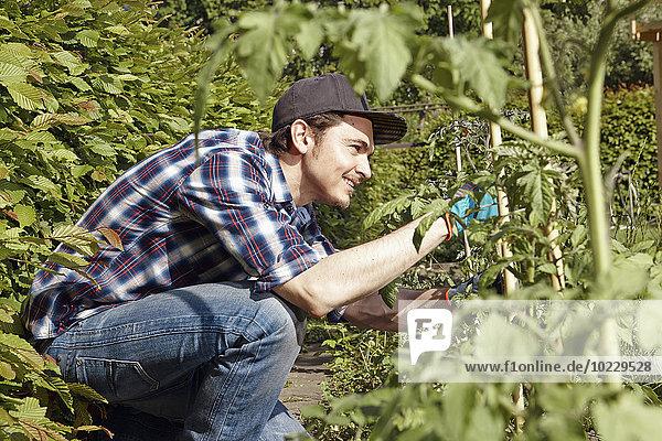 Lächelnder Mann bei der Arbeit im Garten