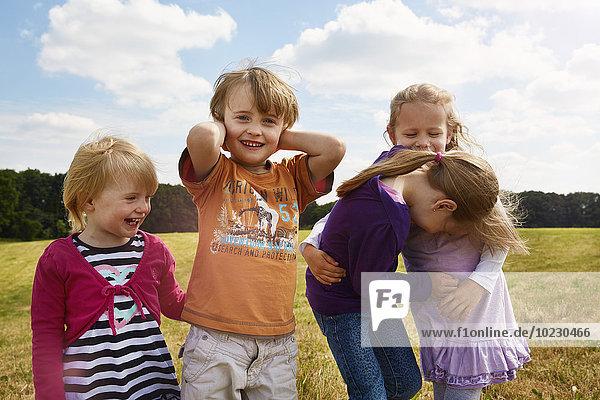 Vier kleine Kinder spielen auf einer Wiese