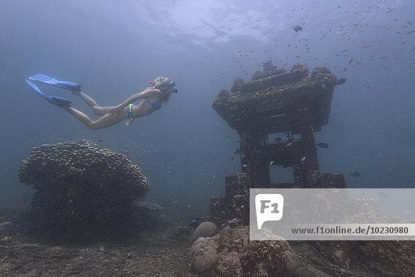 Indonesien  Bali  Frau beim Schnorcheln im Indischen Ozean
