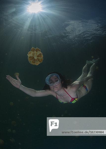 Palau  Frau taucht umgeben von Quallen