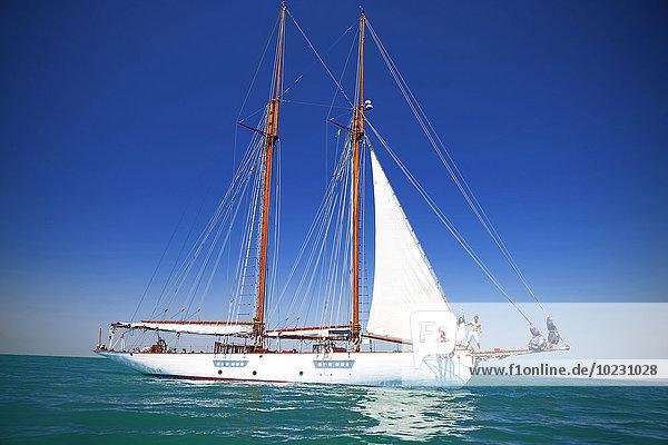 Südafrika  Kapstadt  Segelschiff auf dem Atlantik