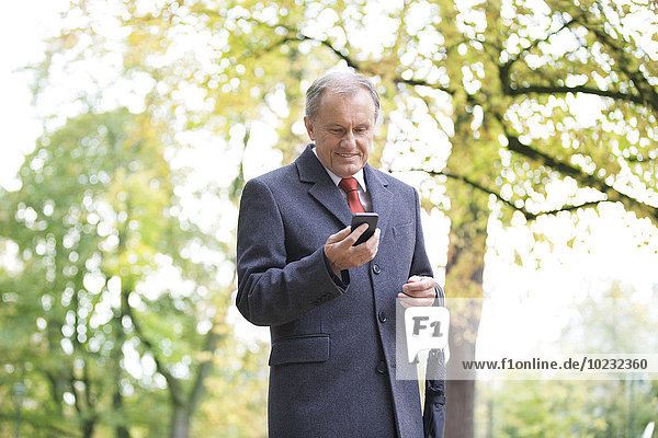 Smiling businessman in a park looking at cell phone