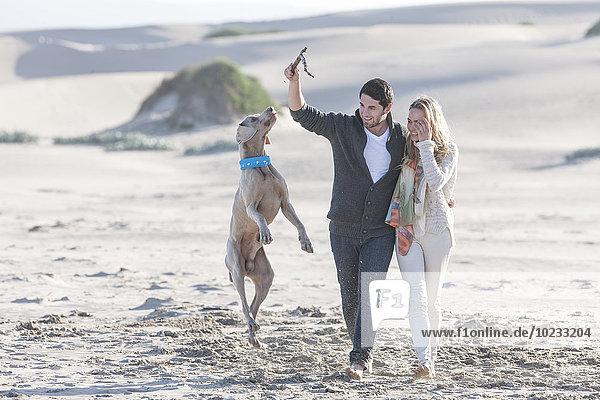 Südafrika  Kapstadt  junges Paar am Strand mit Hund
