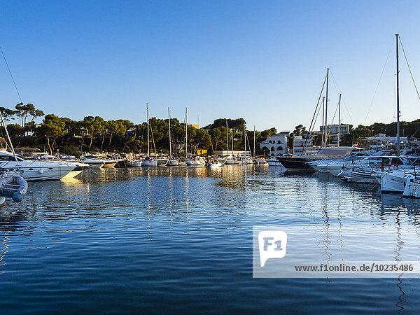 Spanien  Mallorca  Blick auf die Boote von Portopetro