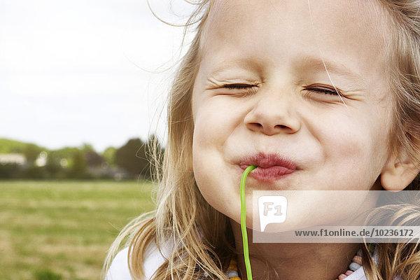 Porträt eines glücklichen kleinen Mädchens  das Süßigkeiten isst. Porträt eines glücklichen kleinen Mädchens, das Süßigkeiten isst.