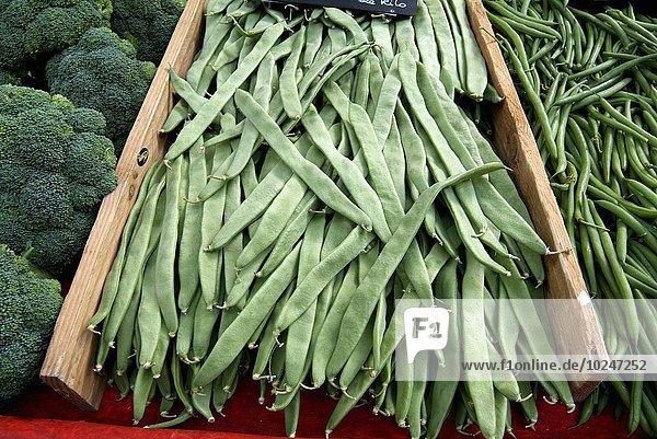 Blumenmarkt grün Gemüse