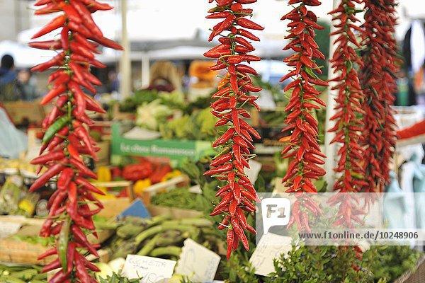 Blumenmarkt Faden rot Italien Markt