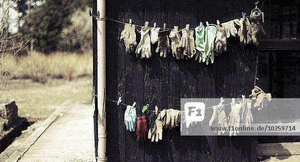 Handschuhe trocknen auf der Wäscheleine im Hof  Hamasaka  Japan