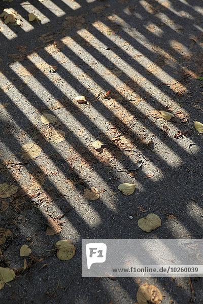 Straße,unordentlich,Schatten,Geländer