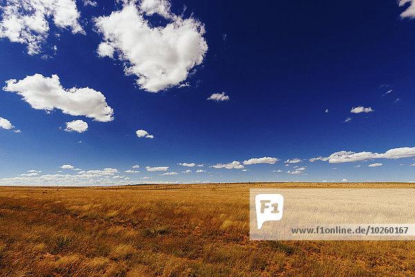 Himmel,Landwirtschaft,Feld,blau