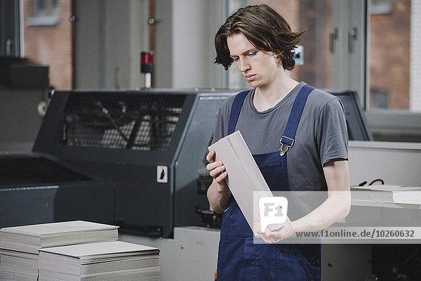 Junger Handwerker beim Prüfen von Kartonbögen in der Fabrik