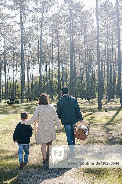 Rückansicht der Familie mit Picknickkorb im Wald