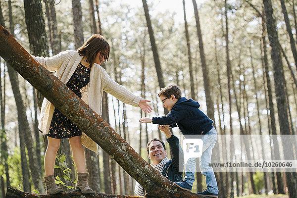 Glückliche Eltern helfen dem Sohn beim Baumklettern im Wald