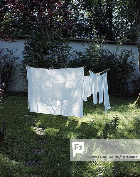 Kleidung,trocknen,Garten