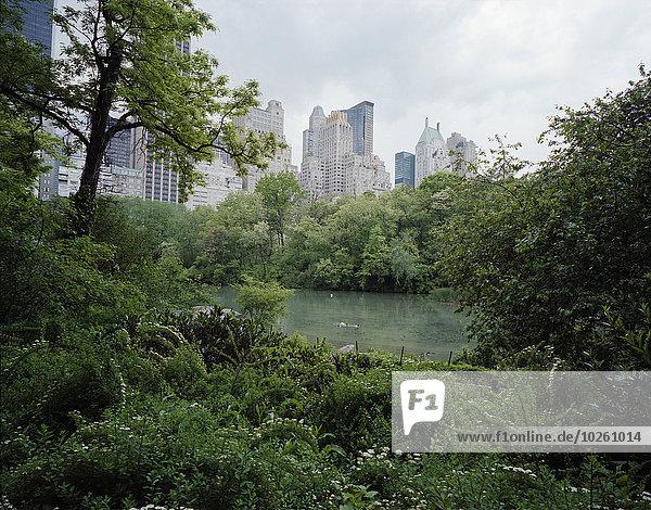 Bäume und Teich gegen Wolkenkratzer  Central Park  Manhattan  New York City  USA