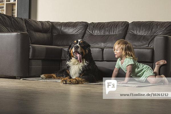 Mädchen mit Border Collie entspannt auf dem Sofa im Wohnzimmer