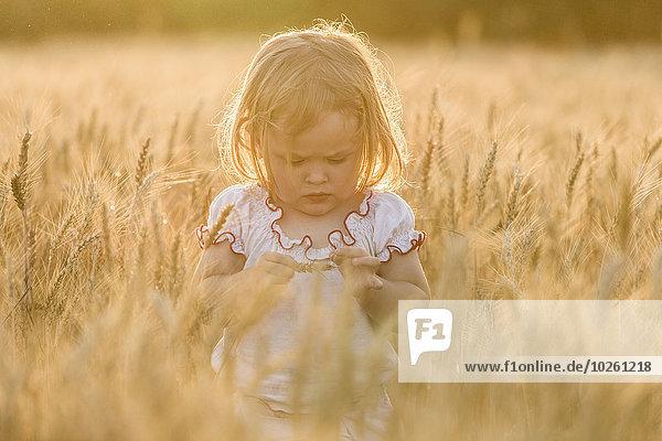 Mädchen stehend inmitten eines Weizenfeldes