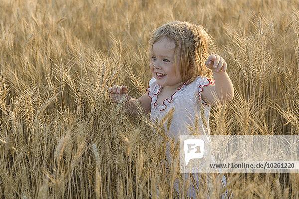 Glückliches Mädchen  das im Weizenfeld spazieren geht.