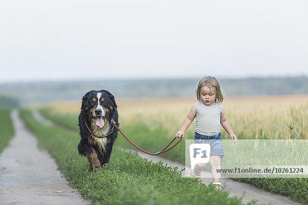 Mädchen beim Spaziergang mit Hund auf dem Feld