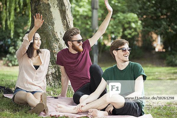 Glückliche Freunde winken beim Entspannen im Park