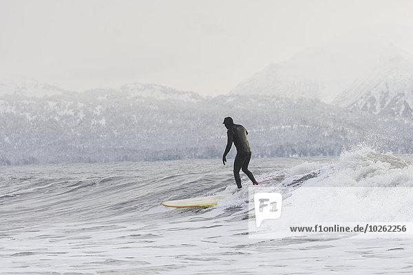 Winter Mensch Kenai-Fjords-Nationalpark Wellenreiten surfen Kenai-Halbinsel