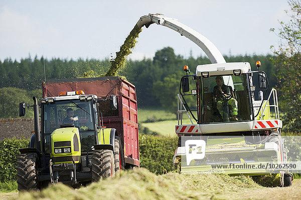 gebraucht beladen Winter Bewegung füttern Gras Einsamkeit hacken Cumbria England vieh Silagebehälter